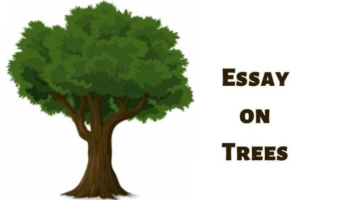 Essay on Trees