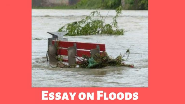 Essay on Floods with Outline (बाढ़ पर निबंध)