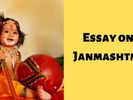 Essay on Janmashtmi