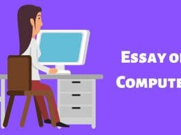 Essay on Computer