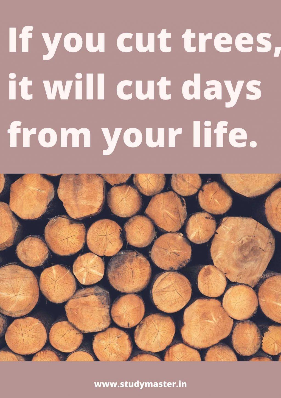poster on deforestation