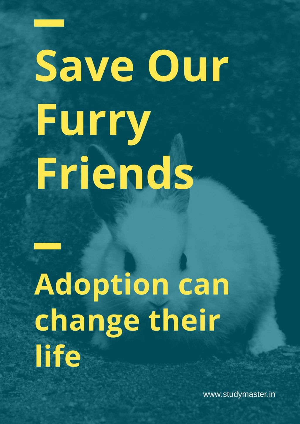 save animals poster with slogan