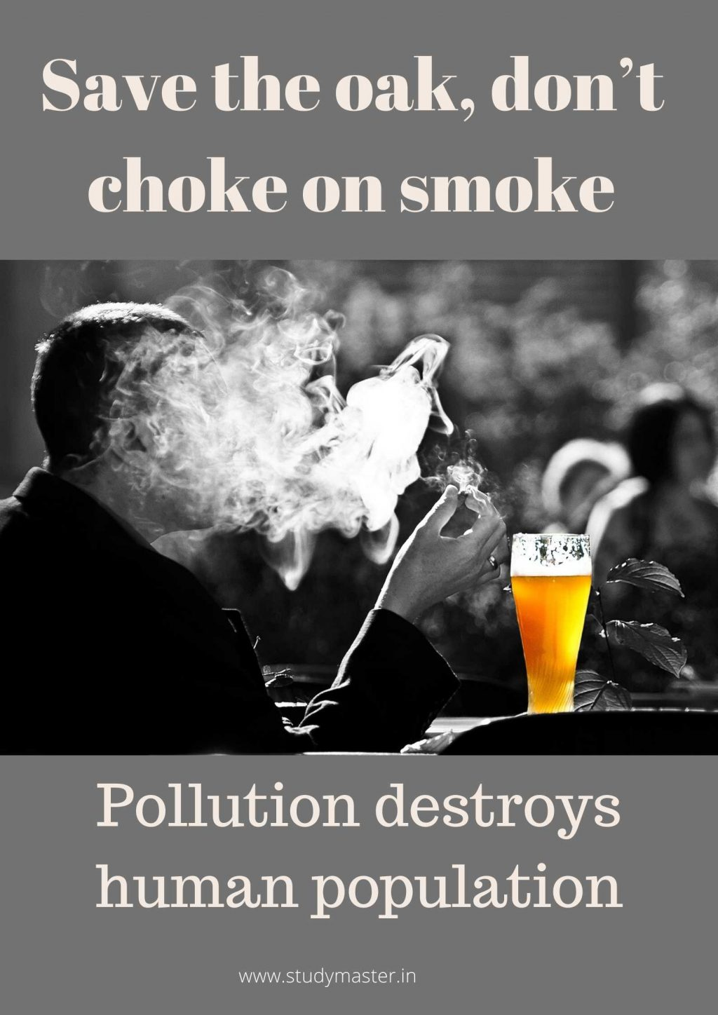 poster on pollution