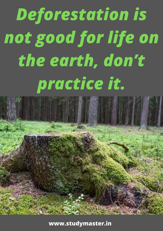 prepare a poster on deforestation