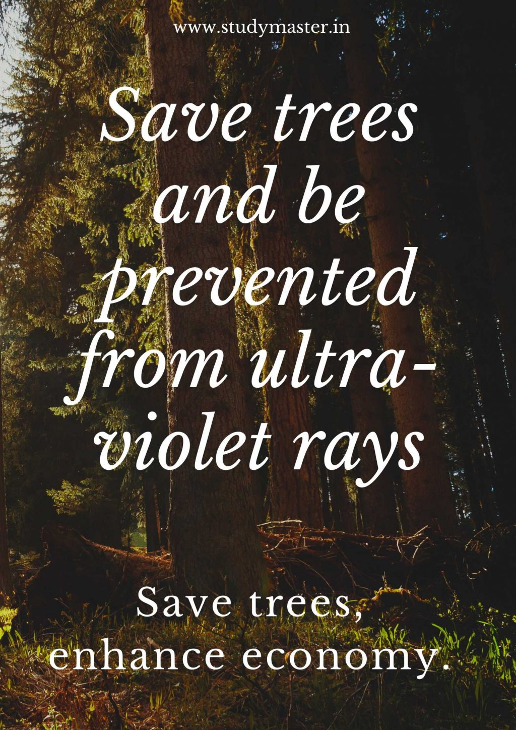 how to make poster on save trees
