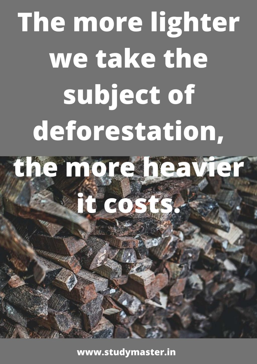poster on say no to deforestation