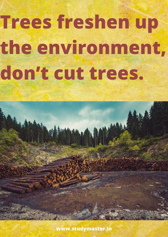 poster about deforestation