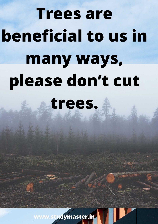 poster for deforestation