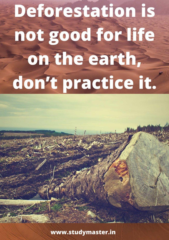poster of deforestation