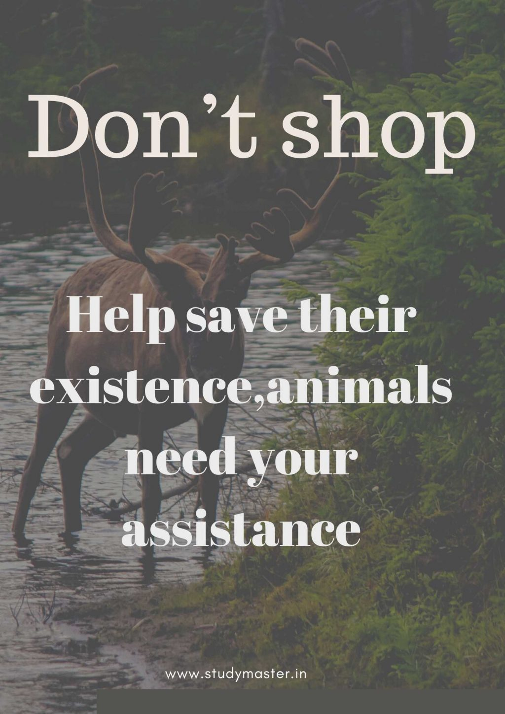poster to save animals