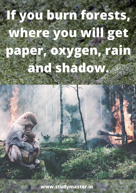 poster making deforestation