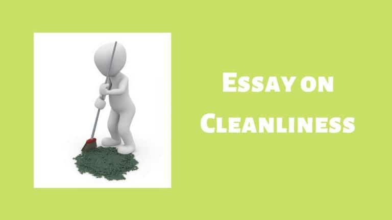 Cleanliness Essay – Essay on Cleanliness in 500 Words