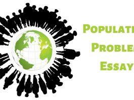 Population Problem Essay