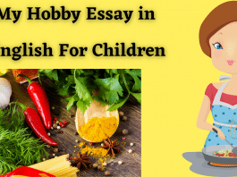My Hobby Essay in English For Children